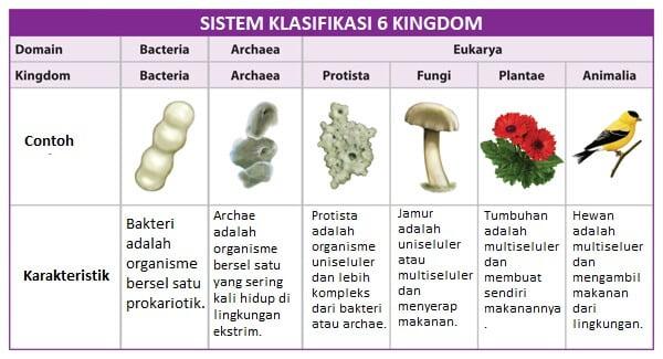 Sistematika Organisme - Klasifikasi Makhluk Hidup
